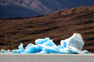 icebergs en los glaciares