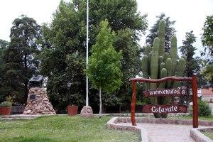 Bienvenidos Cafayate