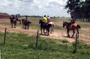 Caballos ruta, Estancia Santa Susana