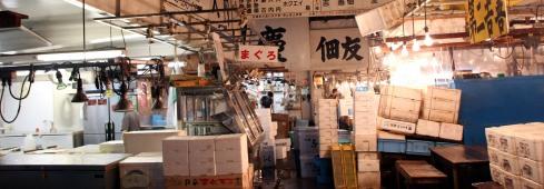panoramica cajas mercado pesacado Tsujiki