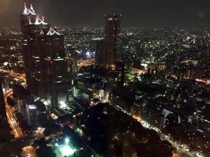 vista Metropolitan government Tokio