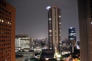 vistas habitacion hotel regency hyatt tokio