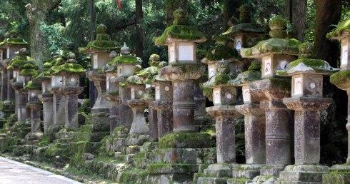 Santuario Kasuga Taisha, linternas piedra, Nara