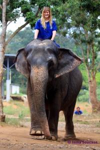 Baan Chang Elephant park - practicando
