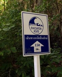 cartel tsunami Tailandia