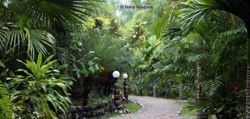 Hotel Khao Sok and spa - camino piedra bungalows