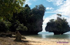 Isla Hong con monos