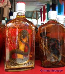 Mercado en Laos - serpiente en botella